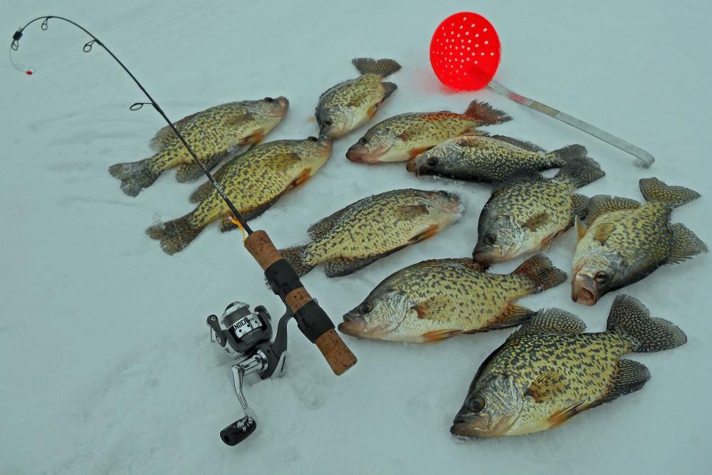 Best ice scoop ice fishing minnesota outdoor minnesota for Best fishing in minnesota