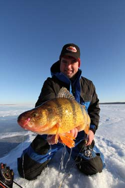 Late Ice Perch