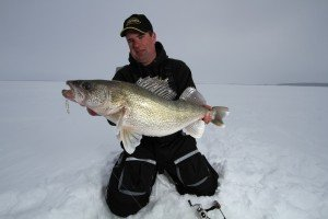 Ice Fishing Walleye After Dark – Huge Walleye