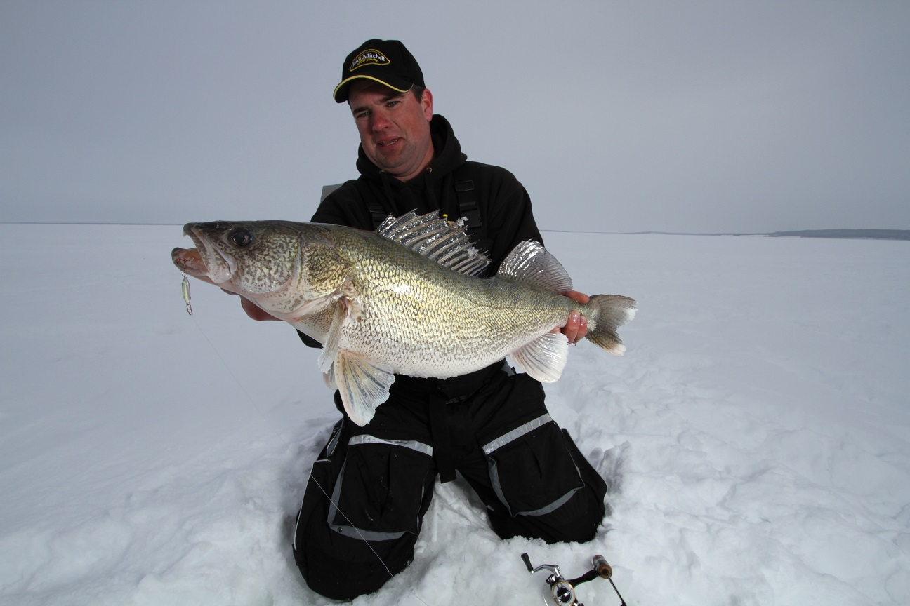 Fort peck walleyes the final frontier for fishing for Fort peck fishing report