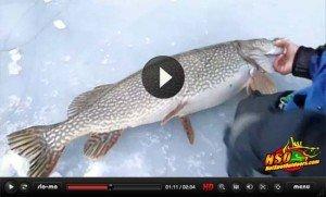 nebraska-state-record-northern-pike-video-slider