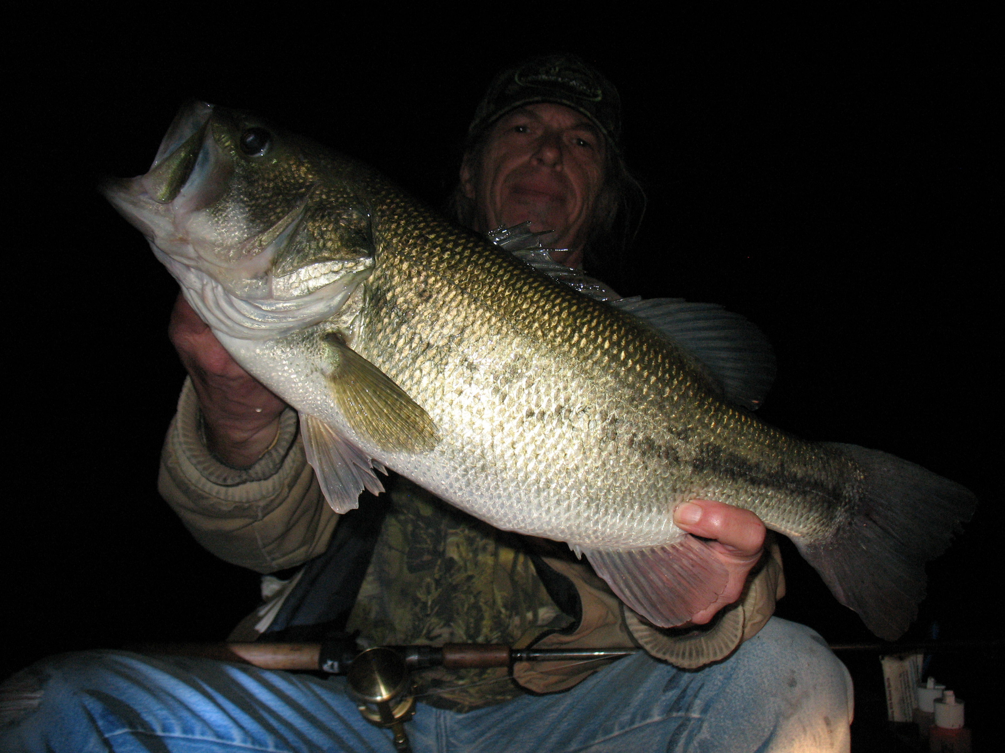 Summer pelagic bass by brett richardson fishing reports for Sand hollow fishing report